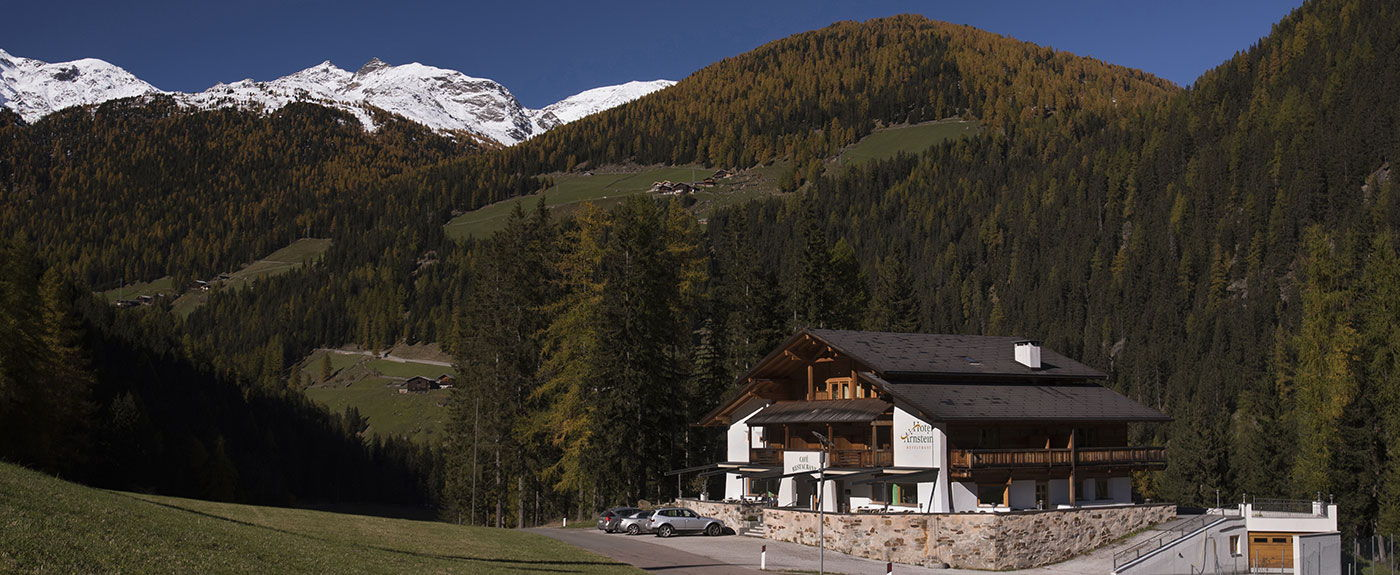 Hotel Arnstein with woods and snowy mountain peaks in the background